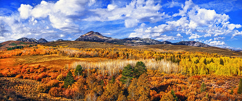 Conway Summit Late Autumn, Eastern Sierras, California Panoramic Metal Print