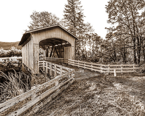 Covered Bridge Sepia, Pacific Northwest Metal Print
