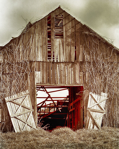 Deserted Barn Standard Art Print