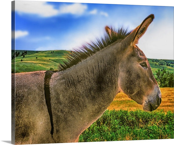 Donkey Standing Tall Canvas