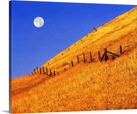 Fence Line Full Moon Canvas