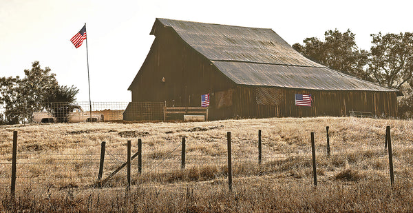 Flag Barn Panoramic Standard Art Print