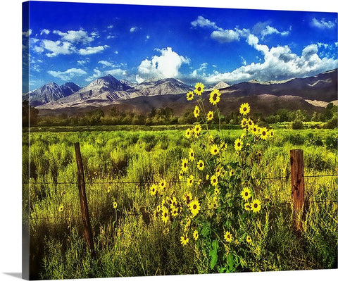 Flowers in the Valley Canvas