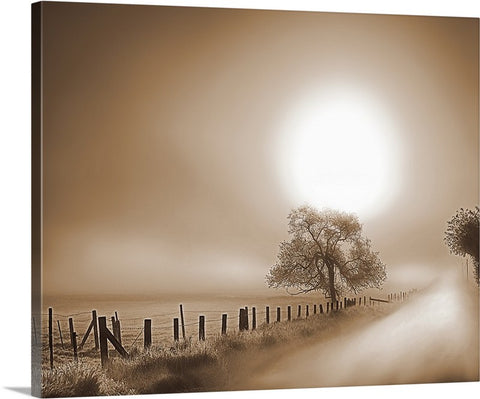 Foggy Road Sepia Canvas