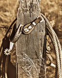 Hang Them Spurs Metal Print