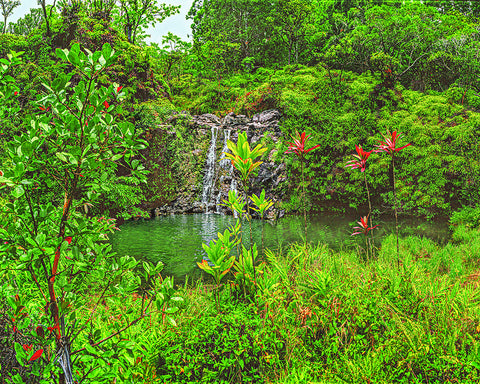 Ole Swimming Hole and Waterfall, Hawaii Standard Art Print