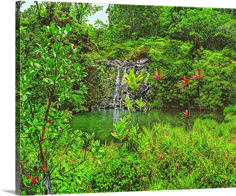 Ole Swimming Hole and Waterfall Canvas