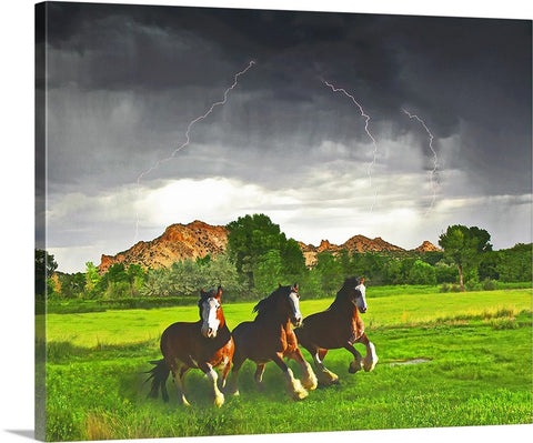 Horse Lightning Canvas