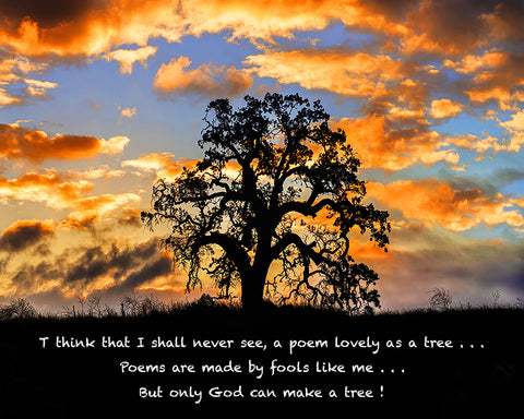 But Only God Can Make a Tree Metal Print