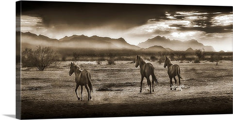 Indian Ponies Sepia Panoramic Canvas