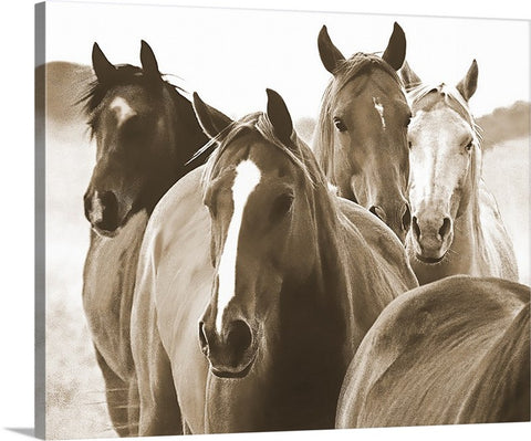 Leaders of the Pack Sepia Canvas