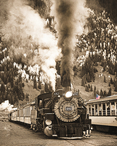 Locomotive to the Past Sepia Metal Print