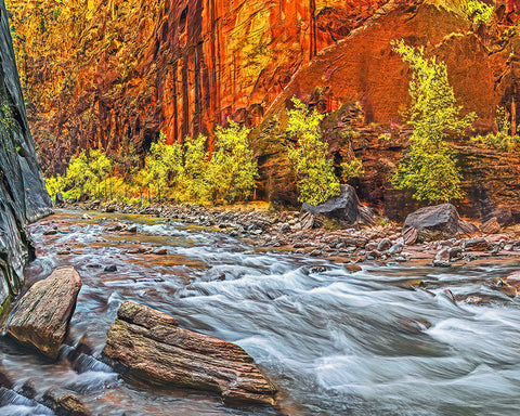 Inside the Narows Left, Zion National Park, Utah Metal Print