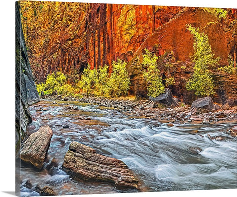 Inside the Narrows Left, Zion National Park, Utah Canvas
