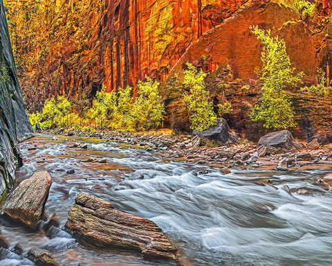 Inside the Narrows, Zion National Park, Utah Left Standard Art Print
