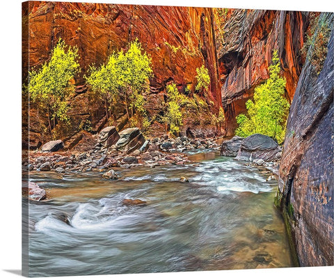 Inside the Narrows Right, Zion National Park, Utah Canvas