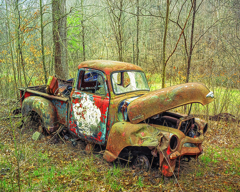 Love the Rust, Chevy Truck Standard Art Print