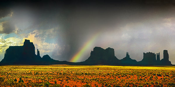 Monument Valley Panoramic Metal Print