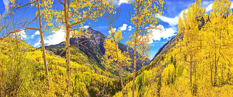 Mountains of Gold Panoramic Metal Print