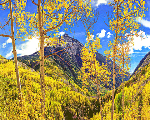 Mountains of Gold, Rocky Mountains Standard Art Print