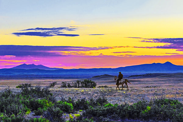 Chino Valley Cowgirl Panoramic Metal Print