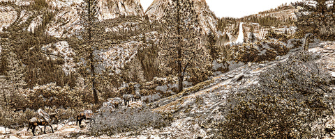 Mule Train, Nevada Falls, Yosemite National Park