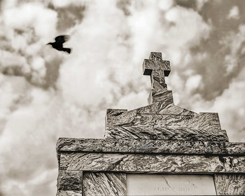 Cross and Crow, New Orleans Standard Art Print