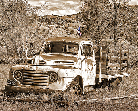 Old Ford and Old Glory Sepia Standard Art Print