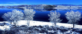 One Cold Morning Panoramic Metal Print