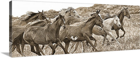 On the Run Sepia Panoramic Canvas