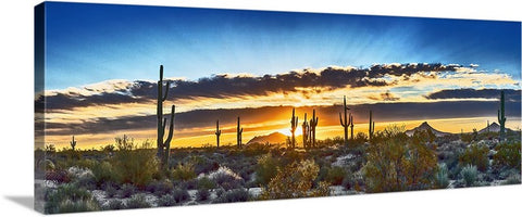 Saguaro Sunrise Panoramic Canvas