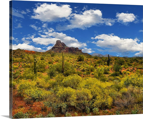 Red Mountain Springtime Canvas