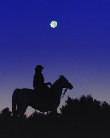 Ridin the Moon Metal Print