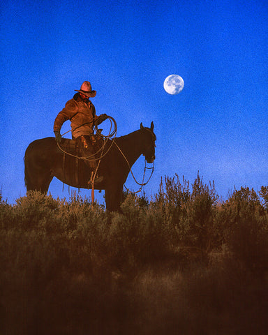 Roped the Moon Standard Art Print