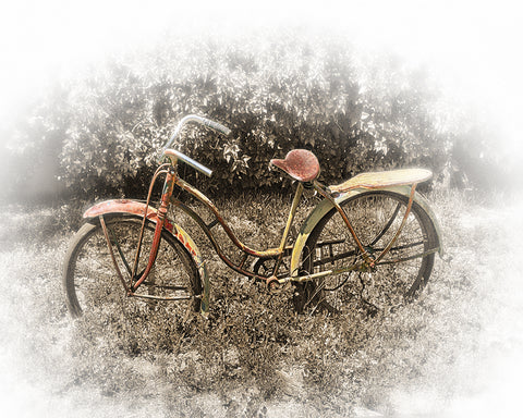 Rusty Bike Metal Print