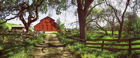 Horse Barn Panoramic Metal Print