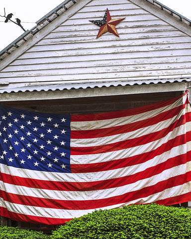 Old Glory Home Metal Print