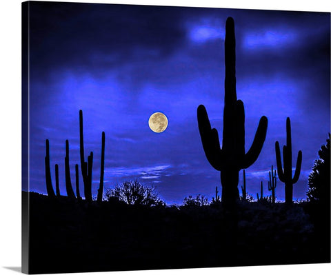 Full Moon and Saguaros, Sonoran Desert Canvas