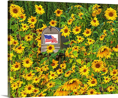 American Flowers Canvas