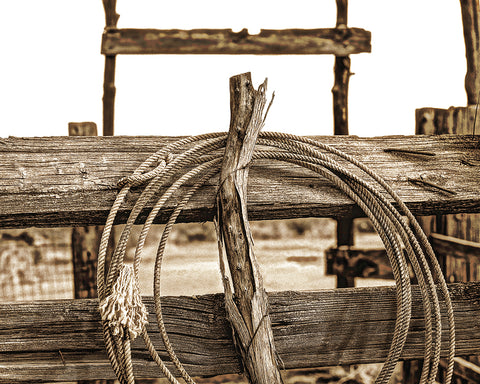 The Rope Metal Print