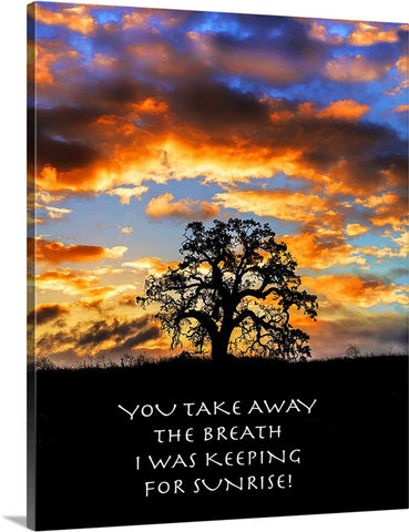 You Take Away the Breath Canvas