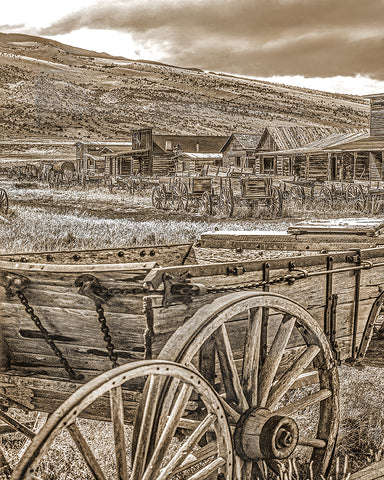 Old Trail Town, Cody, Wyoming Standard Art Print