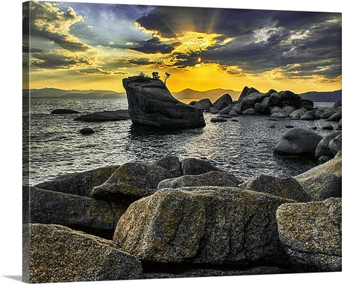 Tree Rock Sunset Canvas