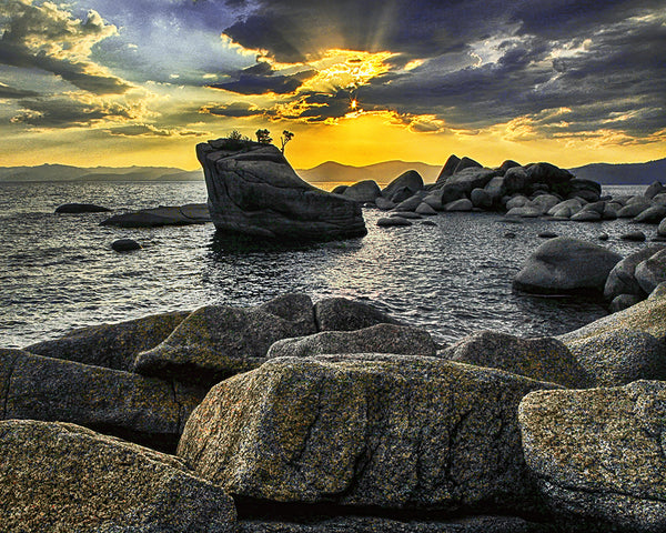 Tree Rock Sunset, Lake Tahoe Standard Art Print