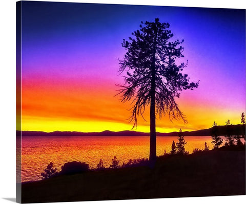 Tree Lake Sunset Canvas