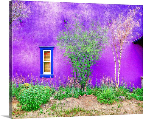 Tucson Presidio Purple Canvas