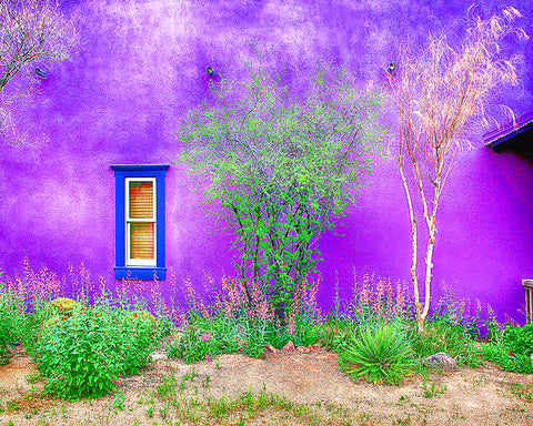 Tucson Presidio Purple Metal Print
