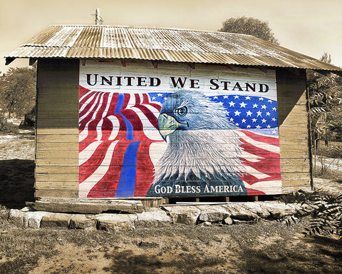 United We Stand, Blue Line Barn Metal Print