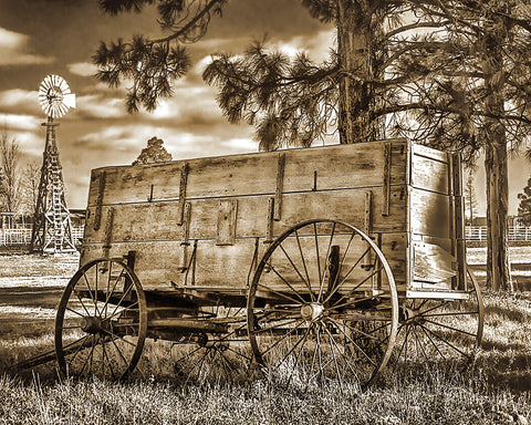 Wood and Wheels Sepia Standard Art Print