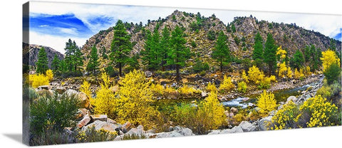 Autumn River Panoramic Canvas